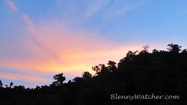 Batanta Sunrise Anna DeLoach BlennyWatcher.com