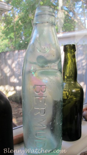 Bermuda Marble Bottle Anna DeLoach BlennyWatcher.com