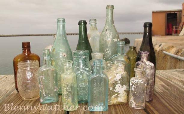 Bermuda Bottles Anna DeLoach BlennyWatcher.com