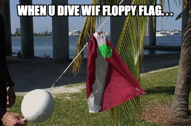Ned's floppy dive flag