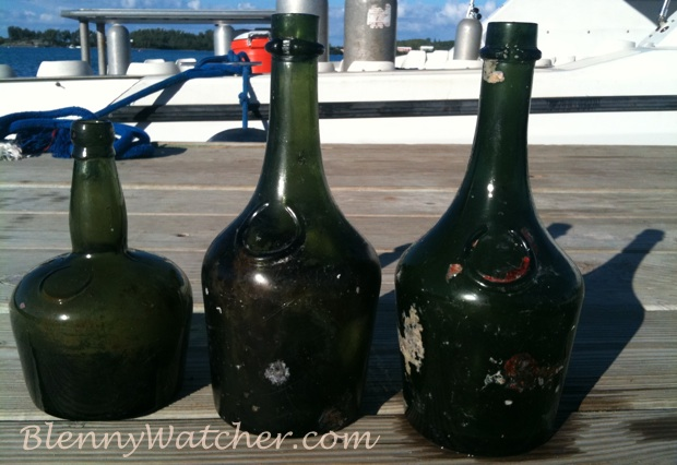 Bermuda bottles found by blennywatcher