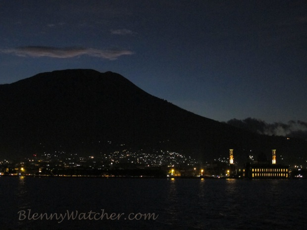 Ternate at night BlennyWatcher.com