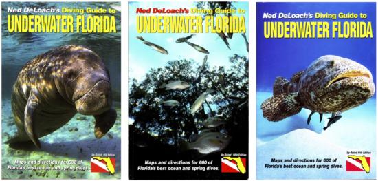 Anna DeLoach - 4 Books Page Diving Guide to Florida