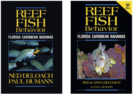 Anna DeLoach - 5 Books Page Behavior books