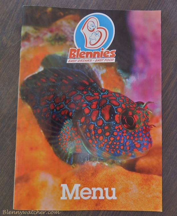 Blennies Bar and Restaurant at Buddy Dive Bonaire