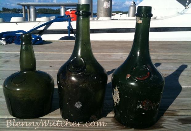 Bermuda bottles found by blennywatcher