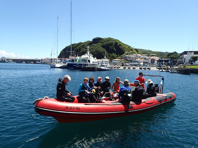 REEF Surveryors in Faial heading out with Norberto Diver