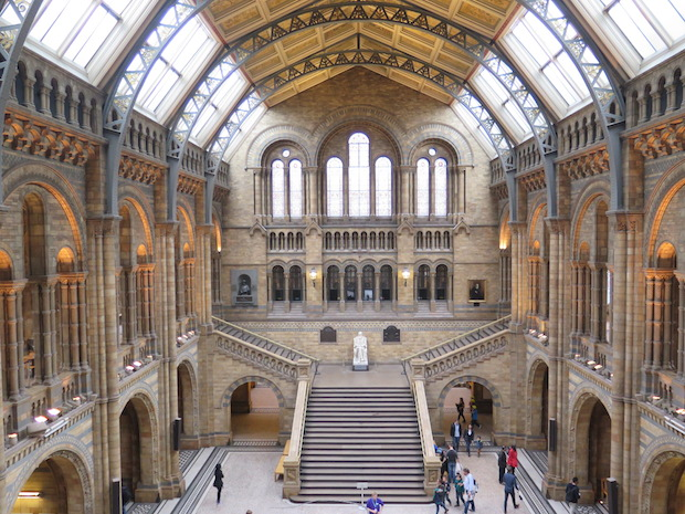 Natural History Museum, London Blennywatcher.com